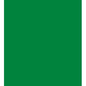 TurtleCoin kopen met iDEAL